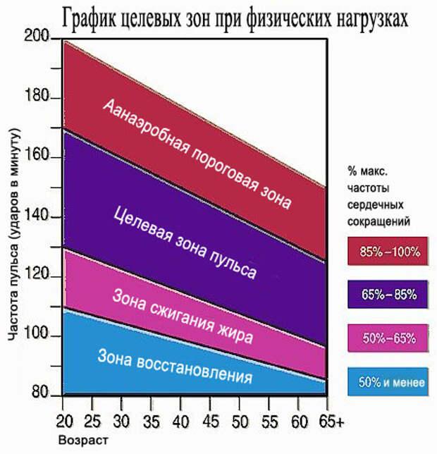 График целевых зон сердечных сокращений