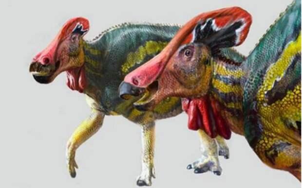 Вновь открытый вид динозавр мог «разговаривать» - палеобиологи