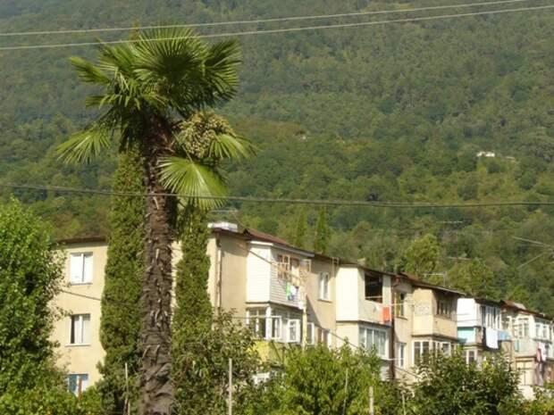 Почему росбизнес не сделал из Абхазии туристический рай
