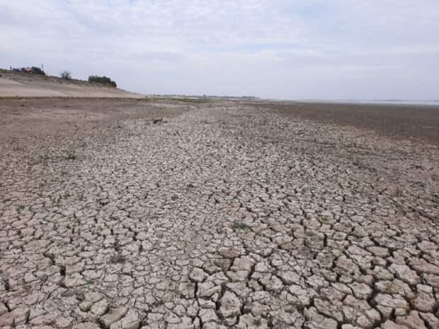 Эколог: колебания климата на Земле станут только сильнее