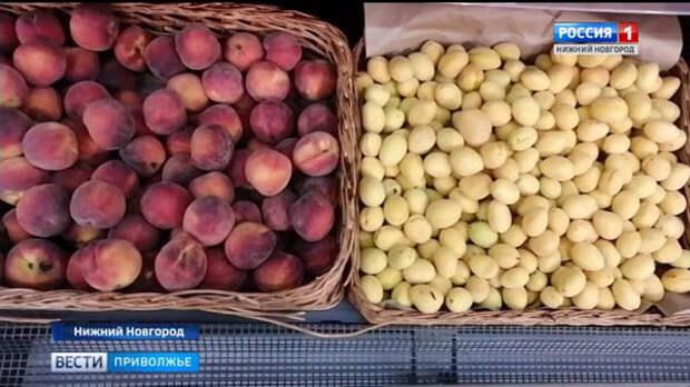 Специалисты не советуют брать фрукты, если те выглядят неприглядно или наоборот, слишком красиво