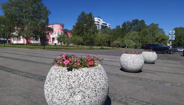 В Петрозаводске высадят более 200 тысяч растений