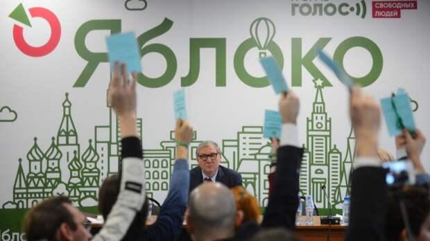 Двух кандидатов от «Яблока» сняли с выборов за связь с экстремистской организацией