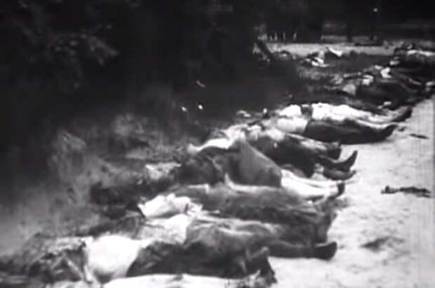 Кому должно быть стыдно 9мая: союзники монстра иреваншисты