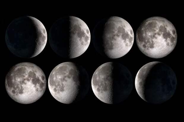 Лунный календарь садовода иогородника с 14 по 30 июня