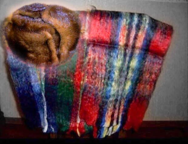 Знаменитый колючий шарф. В нём ходили все бати СССР. Ещё и шапка из хонорика - зато тепло