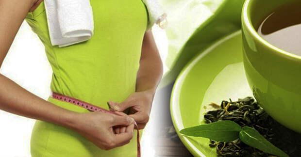 5 чаев, помогающие сжигать лишний жир и контролировать вес