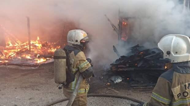 Мать и дочь погибли на пожаре в жилом доме в Арбузовке Ульяновской области