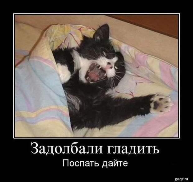 demotivator_prikol_gagz_ru_14458551