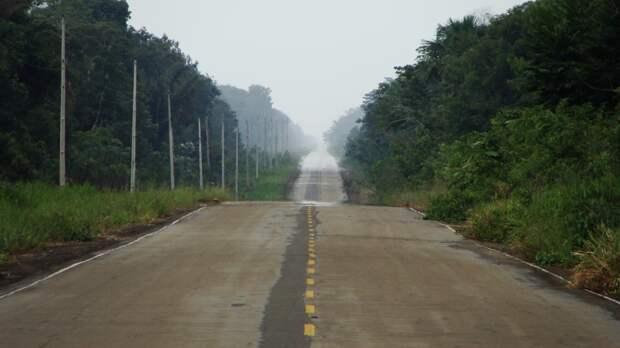 Власти Бразилии могут разрешить строительство автострады в самом сердце Амазонии