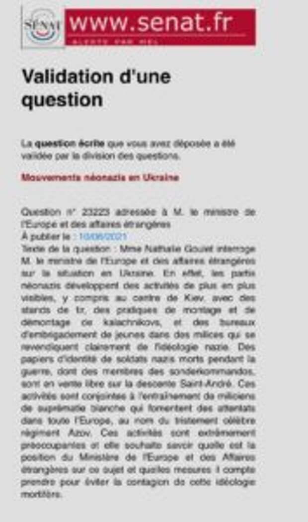 Французские сенаторы увидели неонацизм на Украине