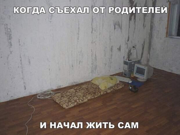 Смешные картинки с надписями со смыслом (10 фото)