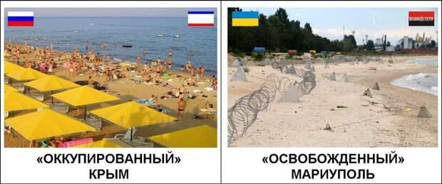 В минувшую пятницу кучка киевских деятелей занималась любимым делом: вместо того, чтобы пахать, сеять...