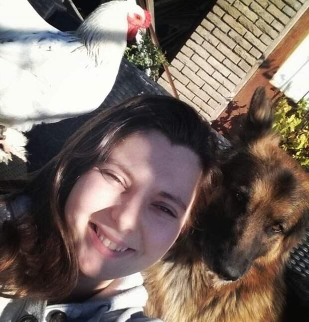 Жительница Германии спасла молодого петуха от съедения и подружила с собаками