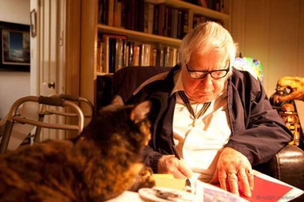 «У меня есть любимый кот — моё пресс-папье на столе, когда я пишу»
