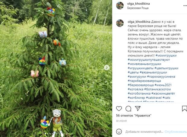 Фото дня: в Березовой роще нарядили летнюю елку