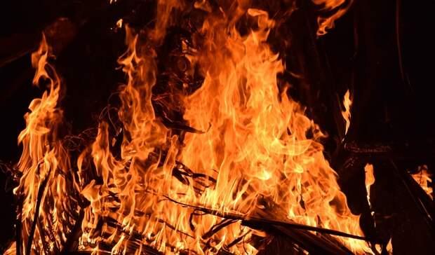 ВРостовской области под суд пойдет местный житель, спаливший 400 галеса
