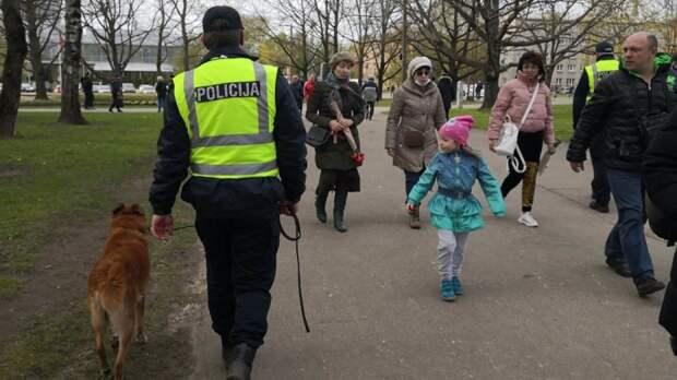 Запрещенный праздник: полиция Латвии открыла дело из-за салюта 9 мая в Юрмале