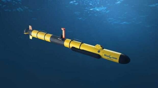 NI: ВМС США заказали первый подводный беспилотник Snakehead