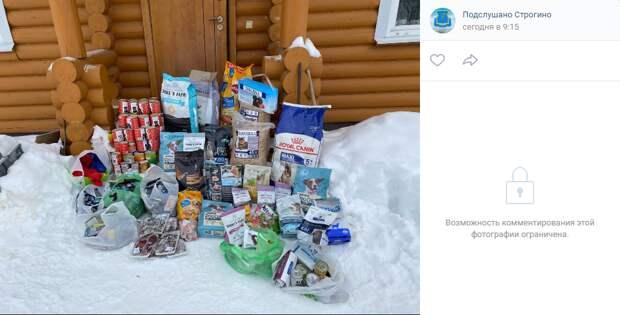 Жители Строгина собрали почти 200 килограммов корма для собак и кошек из приюта