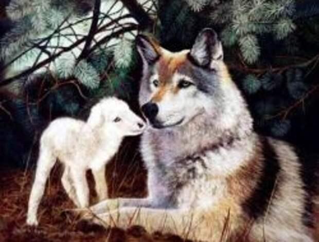 Налоги на недвижимость и кадастровая оценка: чтобы и волки сыты, и овцы целы