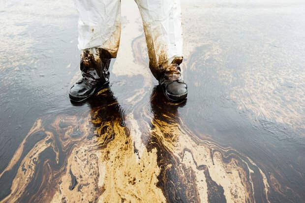Каспийский трубопроводный консорциум скрыл масштабы разлива нефти у Новороссийска