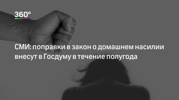 СМИ: поправки в закон о домашнем насилии внесут в Госдуму в течение полугода