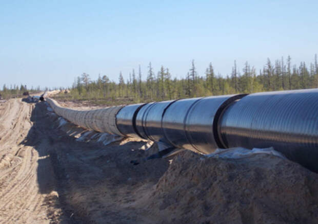 """Транснефть"" в 1 квартале снизила транспортировку нефти на 12%"