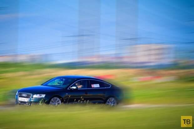 Нелепые правила дорожного движения в США, за нарушение которых можно попасть в тюрьму (11 фото)