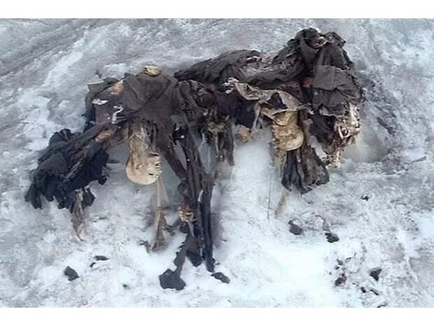 Страшные находки из ледников