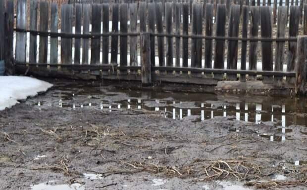 Приусадебные участки двух жительниц Тайшета топят соседи