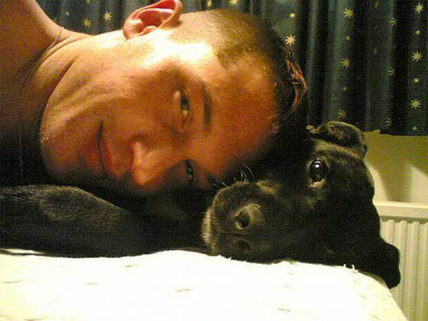 Себяшка с человеком Том Харди, актер, животные, кино, милота, собака, собаки, фильм