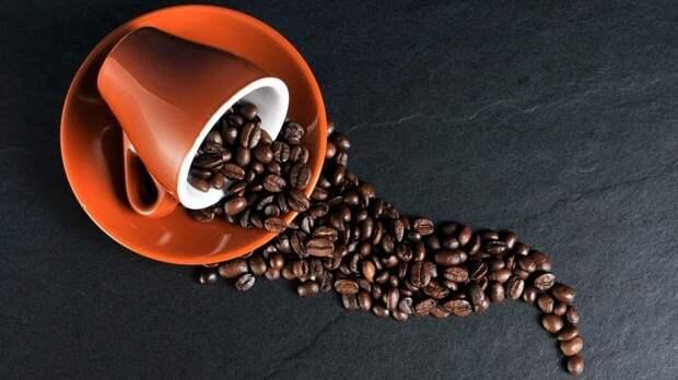 Эксперты объяснили высокие цены в российских кофейнях