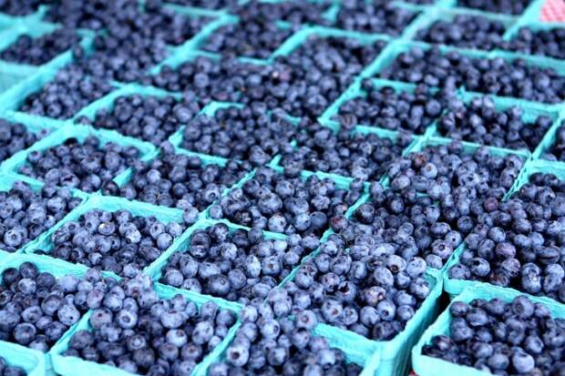 10 лучших суперпродуктов, которые помогут похудеть в кротчайшие сроки