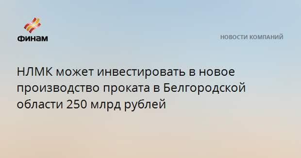 НЛМК может инвестировать в новое производство проката в Белгородской области 250 млрд рублей