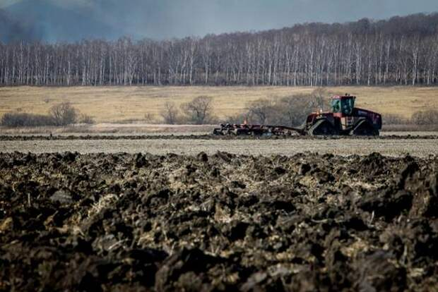 Аграрии заявили о нехватке рабочей силы к началу посевной