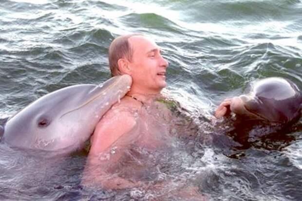 Путин и дельфины
