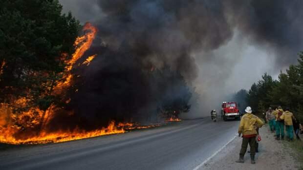 Движение на трассе Екатеринбург — Тюмень частично перекрыли из-за лесного пожара