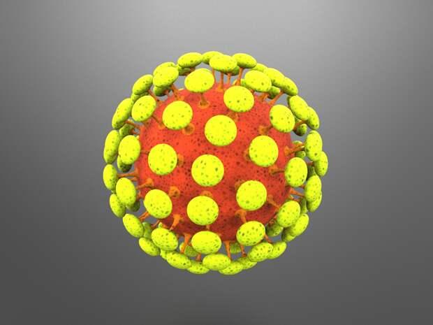 Количество заболевших коронавирусом продолжает расти в Крыму
