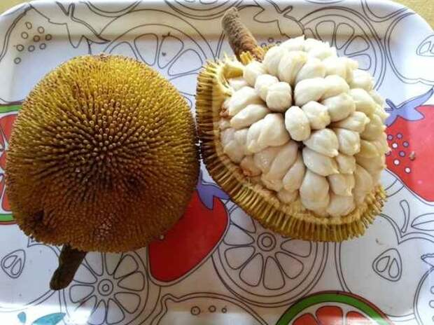 20 экзотических фруктов, о которых вы вряд ли слышали