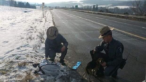 Полиция на дороге
