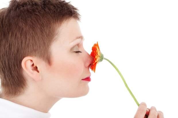 Как быстро и эффективно избавиться от волос в носу