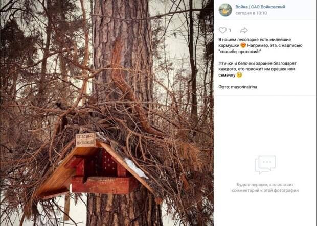Фото дня: В лесопарке обнаружена необычная кормушка