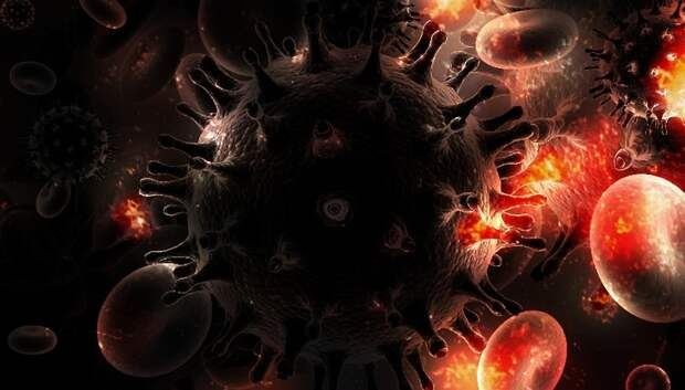 В Подмосковье число умерших с коронавирусом выросло до 74