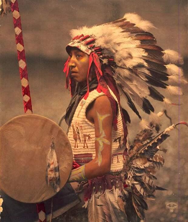 native-american-american-horse.jpg