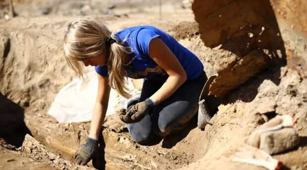 В Африке найдены древнейшие каменные орудия возрастом около двух миллионов лет
