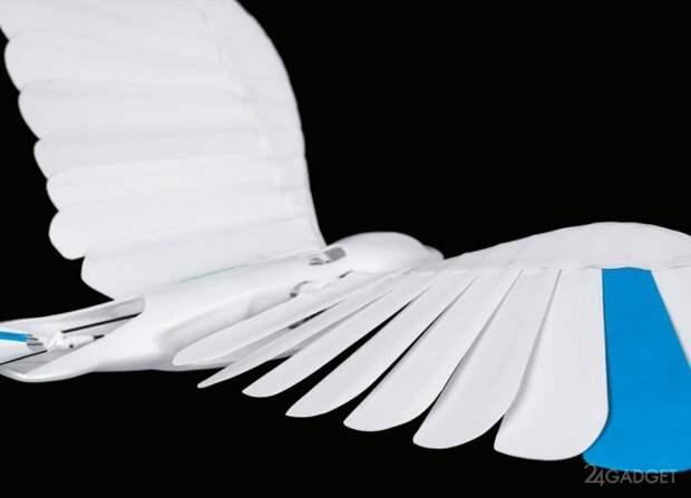 Робот-птица BionicSwift с искусственным оперением