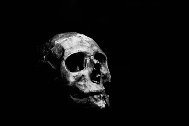 Ученые из Великобритании определили запах смерти