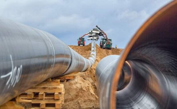 Провокации немецких экологов – «Северный поток-2» под угрозой? северный поток-2, россия, германия