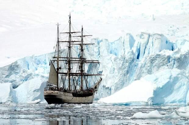 Русские открыли Антарктиду не для того, чтобы о ней позабыть...